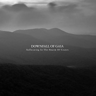 Downfall of Gaia - Suffocating In The Swarm Of Cranes