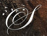 Seyminhol logo