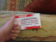 Aonia Leaves' Eyes ticket 2015