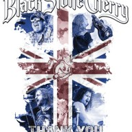 Black Stone Cherry - Livin' Live DVD cover