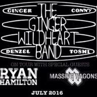 Ginger Wildheart tour 2016
