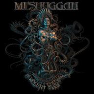 Meshuggah - The Violent Sleep