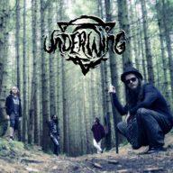 underwing-2016