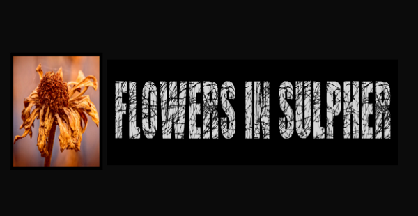 Single Review: Flowers in Sulpher – Utopia Denied