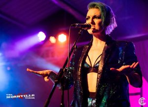 The Lounge Kittens (c) Amy Harris-Abbott
